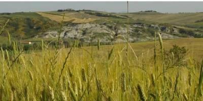 Sviluppo Rurale 2014-2020